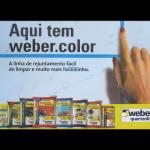 Placa Vaccum Weber
